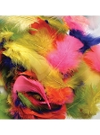 Craft Feathers - 6099