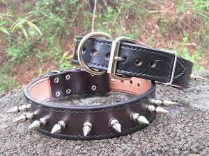 "EXTRA LARGE Bad Dog 1 1/2"" Spike Collar, 1 1/4"" Spikes - BD24X"