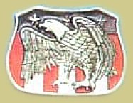 """Eagle"" Heavy Cast Epoxy Inlay Buckle - EB2071"