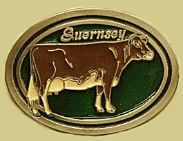 """Guernsey Cow"" Heavy Cast Epoxy Inlay Buckle - EB2311"