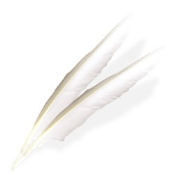 Large White Wing Feathers (4 Pack) - 519703