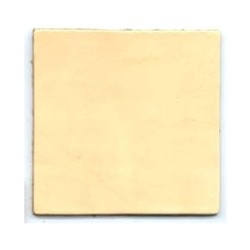 2in Leather Square (10-Pk)
